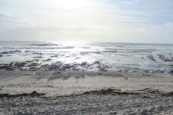 CT Sea Point Sat